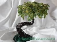 Фикус (бонсай) - Деревья из бисера - Галерея - Персональный сайт Мотрошиловой Елены.